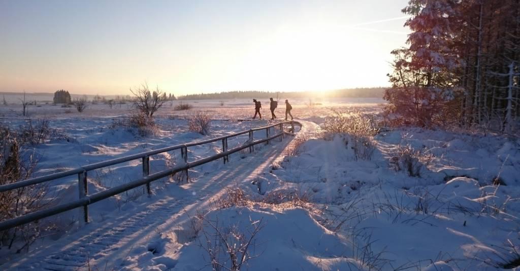 4 Winteractiviteiten die je gedaan moet hebben