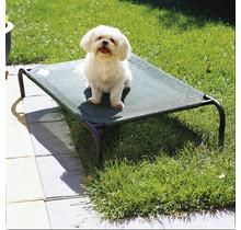 Coolaroo Pet bed voor kat of hond - green (groen) - SMALL - 71 x 55 cm