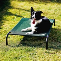Coolaroo Dog bed Medium groen 90x65 cm