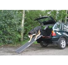 DogStep PetStep HalfStep rampe pour chien