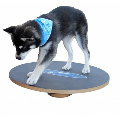FitPAWS FitPAWS Tableau d'équilibre - Tableau oscillant - FitPAWS Wobble Board