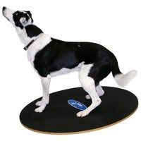 FitPAWS FitPAWS Wobble Board