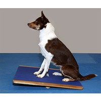 FitPAWS FitPAWS Groot Balanceerbord