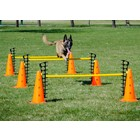 FitPAWS FitPAWS Hurdle Set