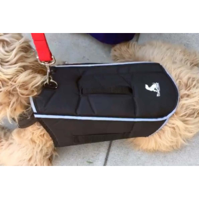 All for paws Comfy Wrap veste pour chien protection et stabilité au corps de votre chien