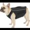 All for paws Comfy Wrap wikkel om romp hond te bedekken voor bescherming en stabiliteit