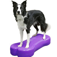 FitPAWS FitPAWS K9FITbone