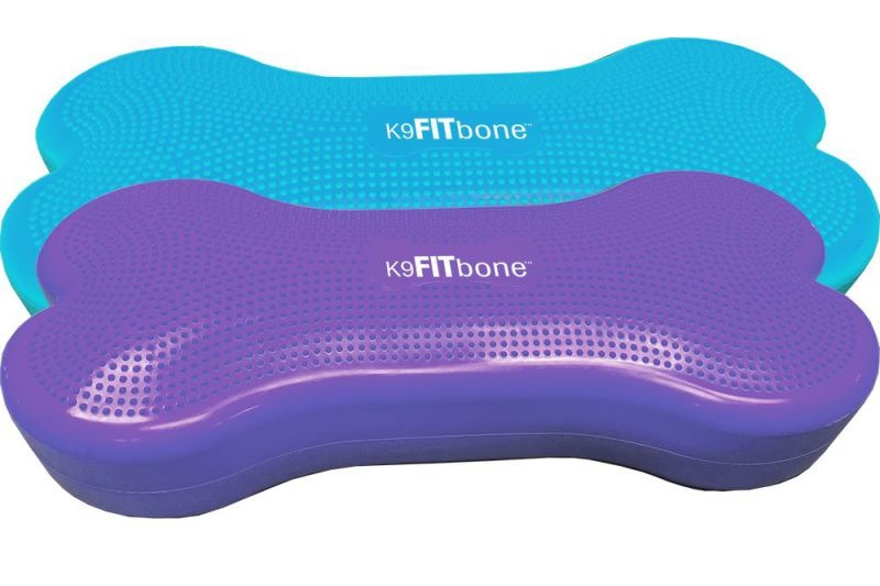 FitPaws K9FITbone Giant Turquoise - Violet SalesDepot