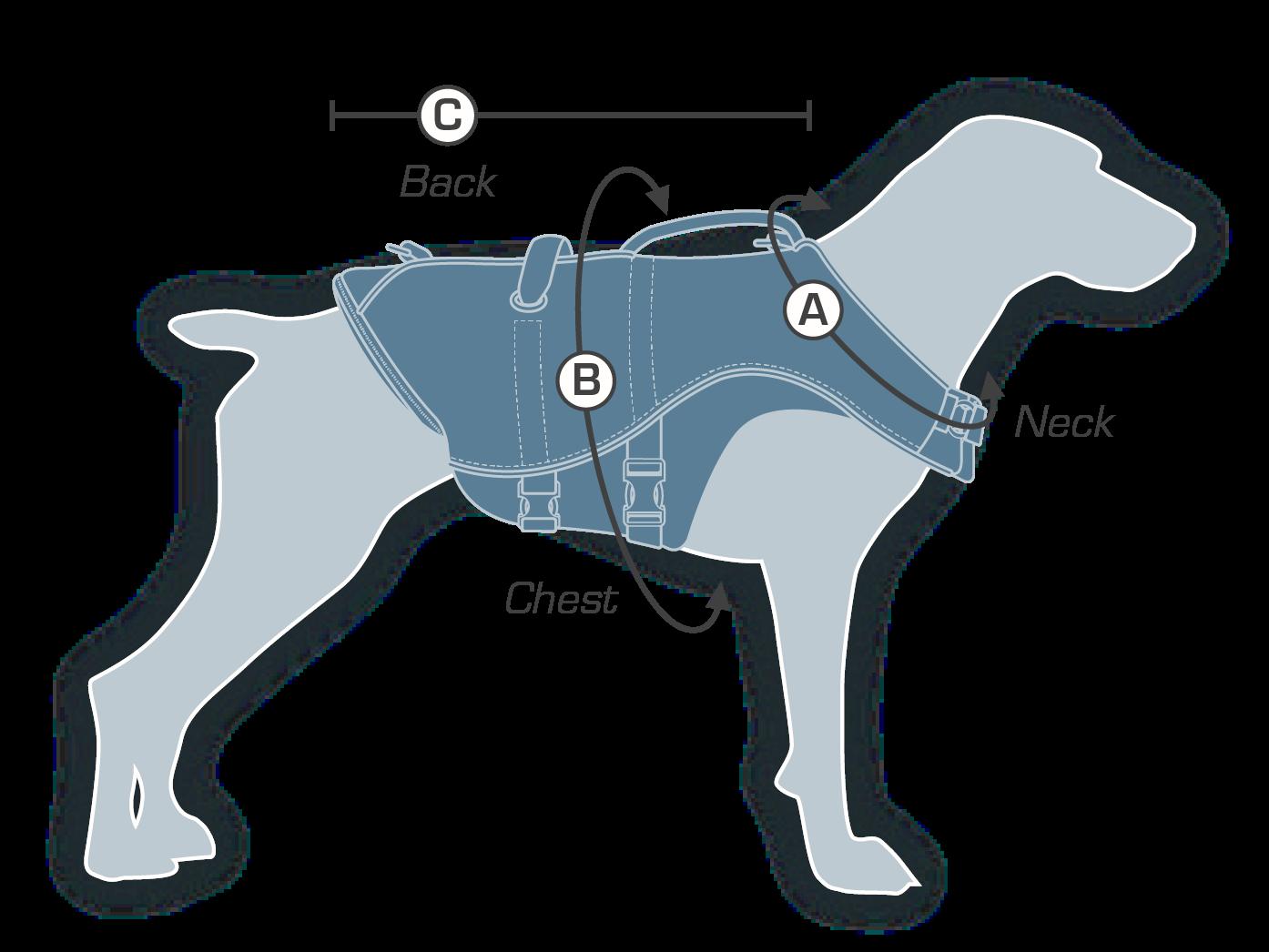 how to measure KURGO Surf N Turf dog life jacket