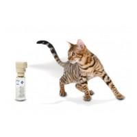 PetSafe Ssscat afschrikking spray PDT19-16170