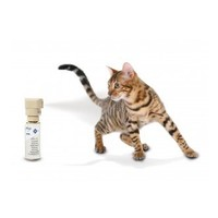 PetSafe Ssscat spray répulsif PDT19-16170