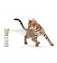Ssscat Cat control PDT19-16170