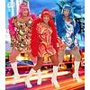 Feestkleding voor vrijgezellenfeesten vette travestiet
