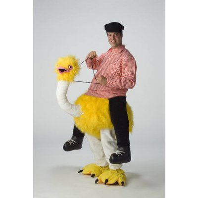 Vrijgezellenavond super tip: Bereden Struisvogel