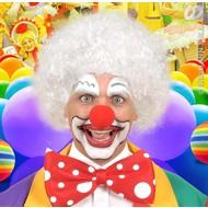 feestaccessoires: Clownspruik