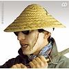 Vietcong hoeden