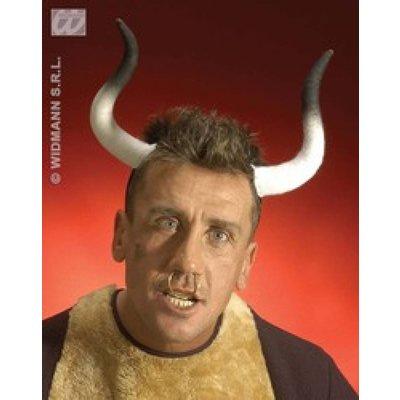 Stieren-hoorns voor echte bulls