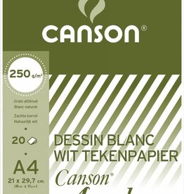 Canson Canson Tekenblok Academy ft 21 x 29,7 cm (A4)