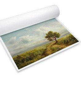 "Optiplot Master Photopaper Satin  24""X30 meter"