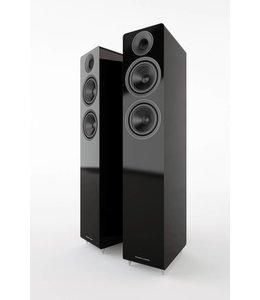 Acoustic Energy AE 309