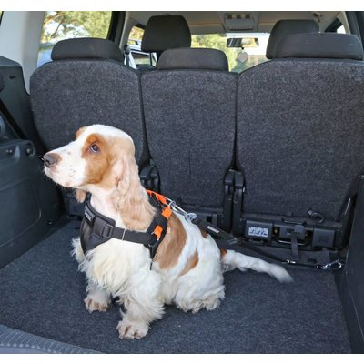 Kardiff Kardi Air 3D Sicherheitsgurt für Hunde