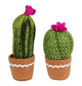 ROND + LANG CACTUSJE
