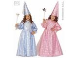 Baby feestkleding kinderen: magische fee rose/blauw