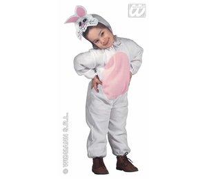 Babyfeestkleding kinderen: konijn