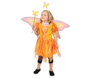 Babyfeestkleding kinderen: Vlinderpopje
