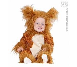 Babypakje kinderen: Leeuw