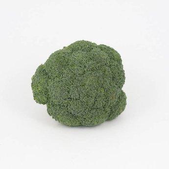 Moestuinplant Broccoli planten