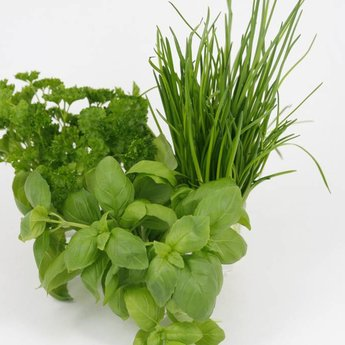 mixpakket diverse kruidenplanten bieslook, peterselie en basilicum
