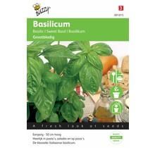 Grove basilicum kruidenzaden