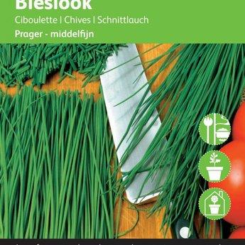 Moestuinplant Bieslook kruidenzaden