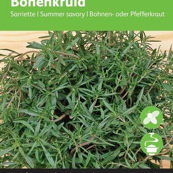 Moestuinplant Bonenkruid kruidenzaden