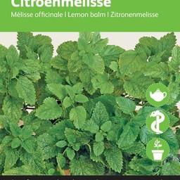 Moestuinplant Citroenmelisse