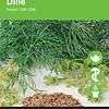 Moestuinplant Dille
