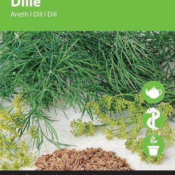 Moestuinplant Dille kruidenzaden