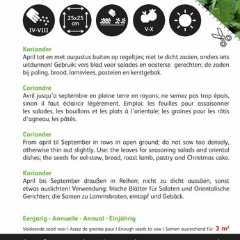Moestuinplant grootzadige koriander kruidenzaden