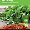 Moestuinplant Koriander