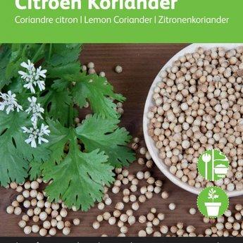 Moestuinplant Ciroenkoriander kruidenzaden