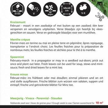 Moestuinplant Munt kruidenzaden