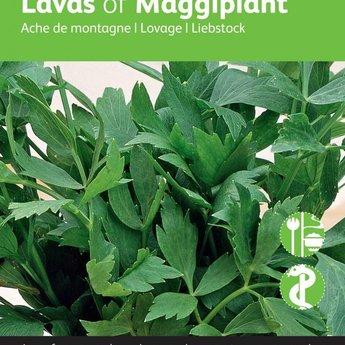 Moestuinplant Maggiplant kruidenzaden