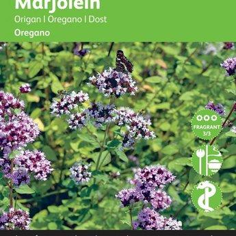 Moestuinplant Marjolein kruidenzaden