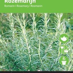 Moestuinplant Rozemarijn