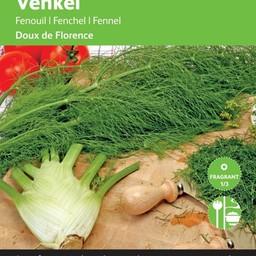 Moestuinplant Venkel