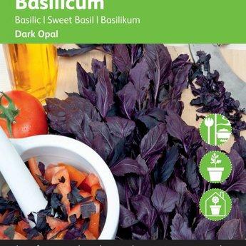 Moestuinplant Rode basilicum kruidenzaden