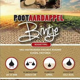 Moestuinplant Pootaardappel Bintje 1 Kg