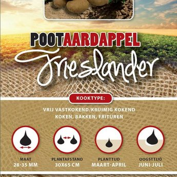 Moestuinplant 1 kilo Frieslander pootaardappel zeer vroeg