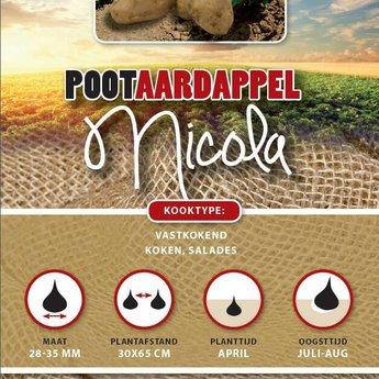 1 kilo Nicola pootaardappel vastkokend